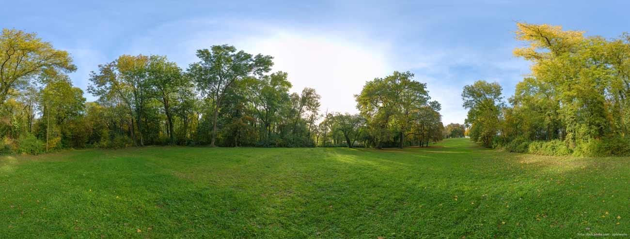 Die Bürgerweide in Worms - das Wäldchen und der Stadtpark